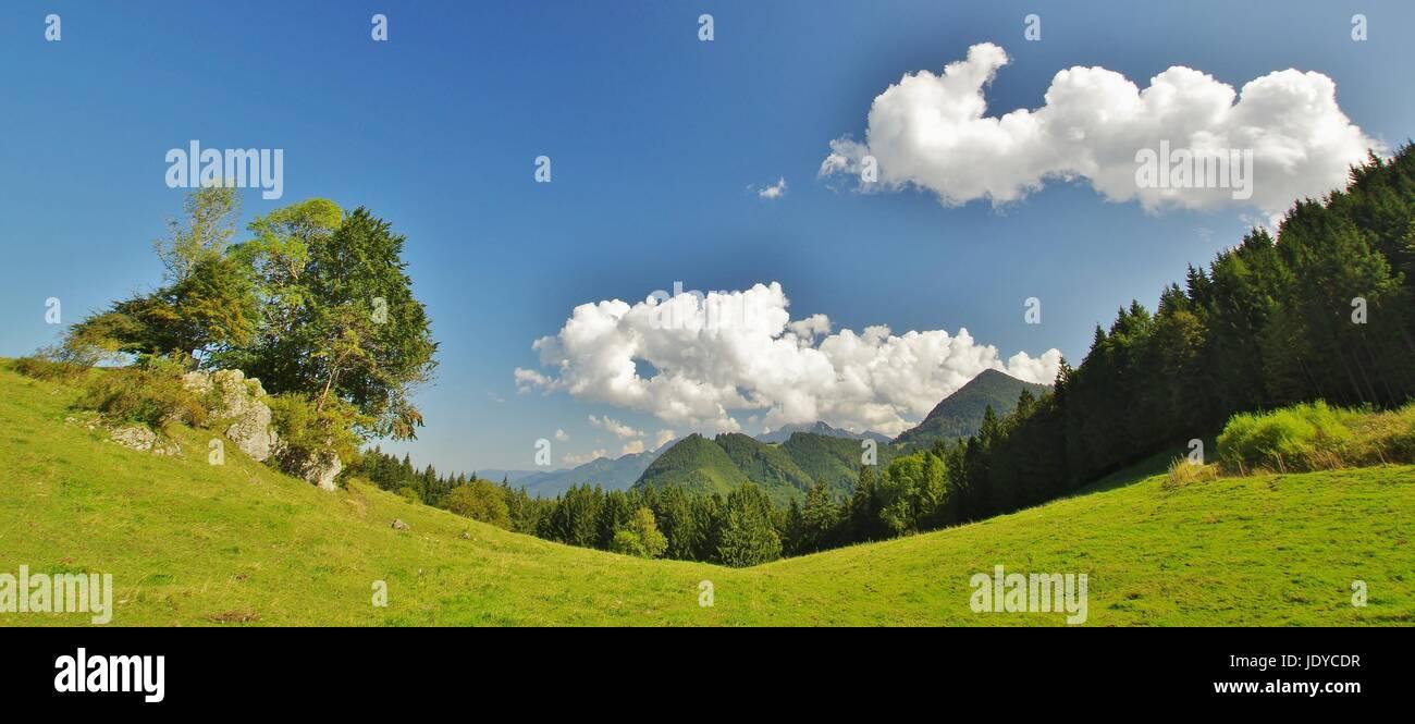 panorama path to the lindl-alm,bernau,chiemgau Stock Photo