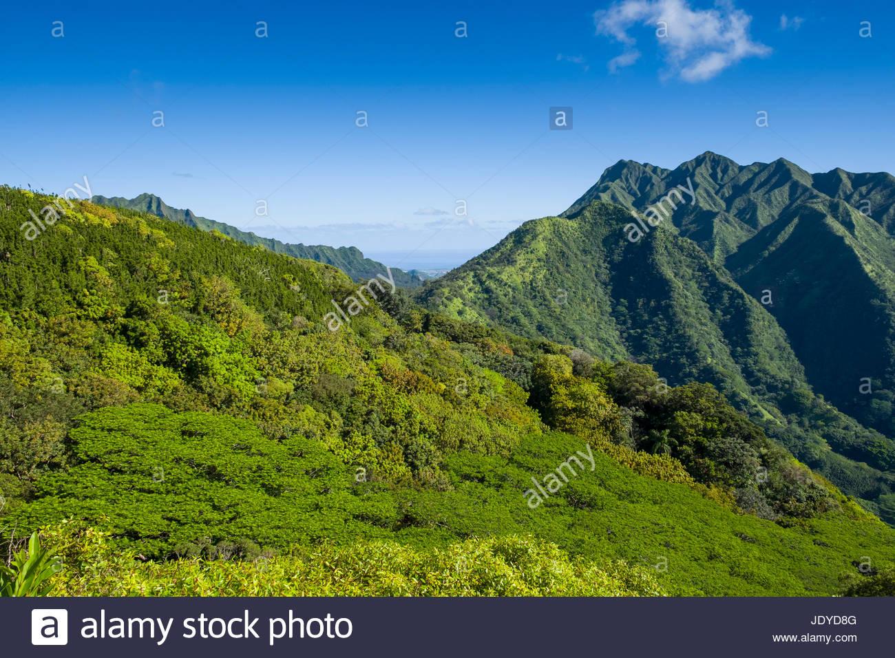 Koolau Mountain Range, Honolulu Watershed Forest Reserve, Honolulu, Oahu, Hawaii, USA - Stock Image
