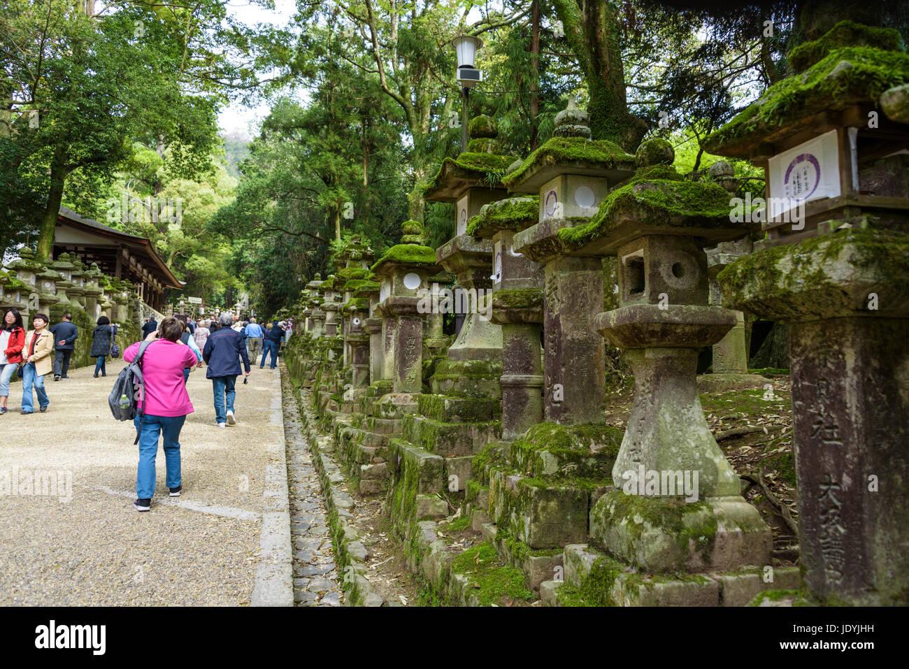 kasuga-taisha stone lanterns Stock Photo