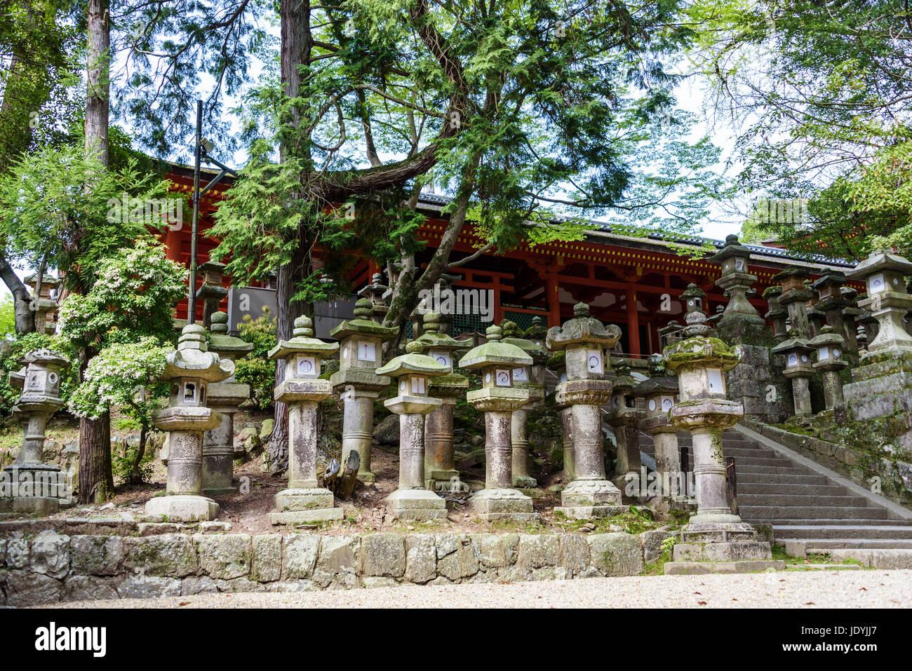 kasuga-taisha stone lanterns - Stock Image