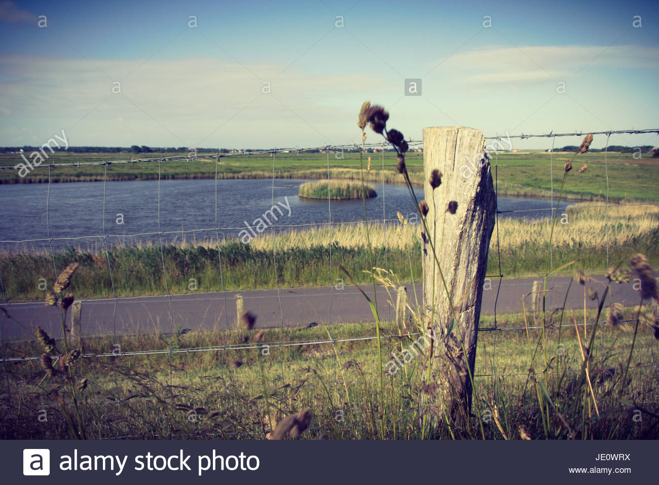 Marshland landscape Germany nature protected area nature reserve lake landscape summer scenery environmental protection - Stock Image