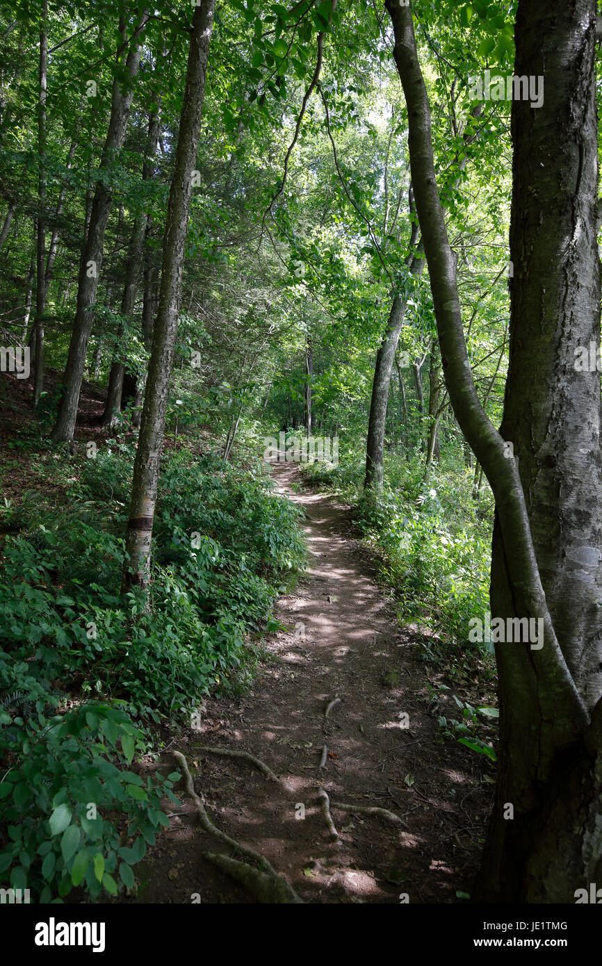 Appalachian Trail in Pawling NY - Stock Image