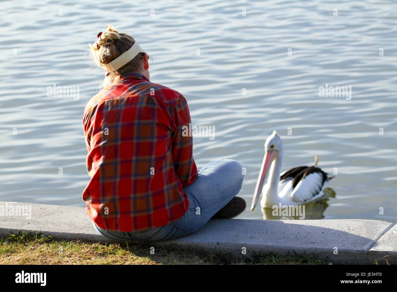 A blond lady in her thirties watches an Australia Pelican swimming. - Stock Image