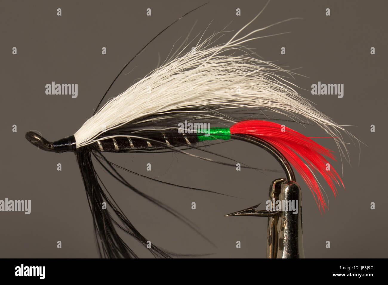 Steelhead streamer fishing fly Stock Photo