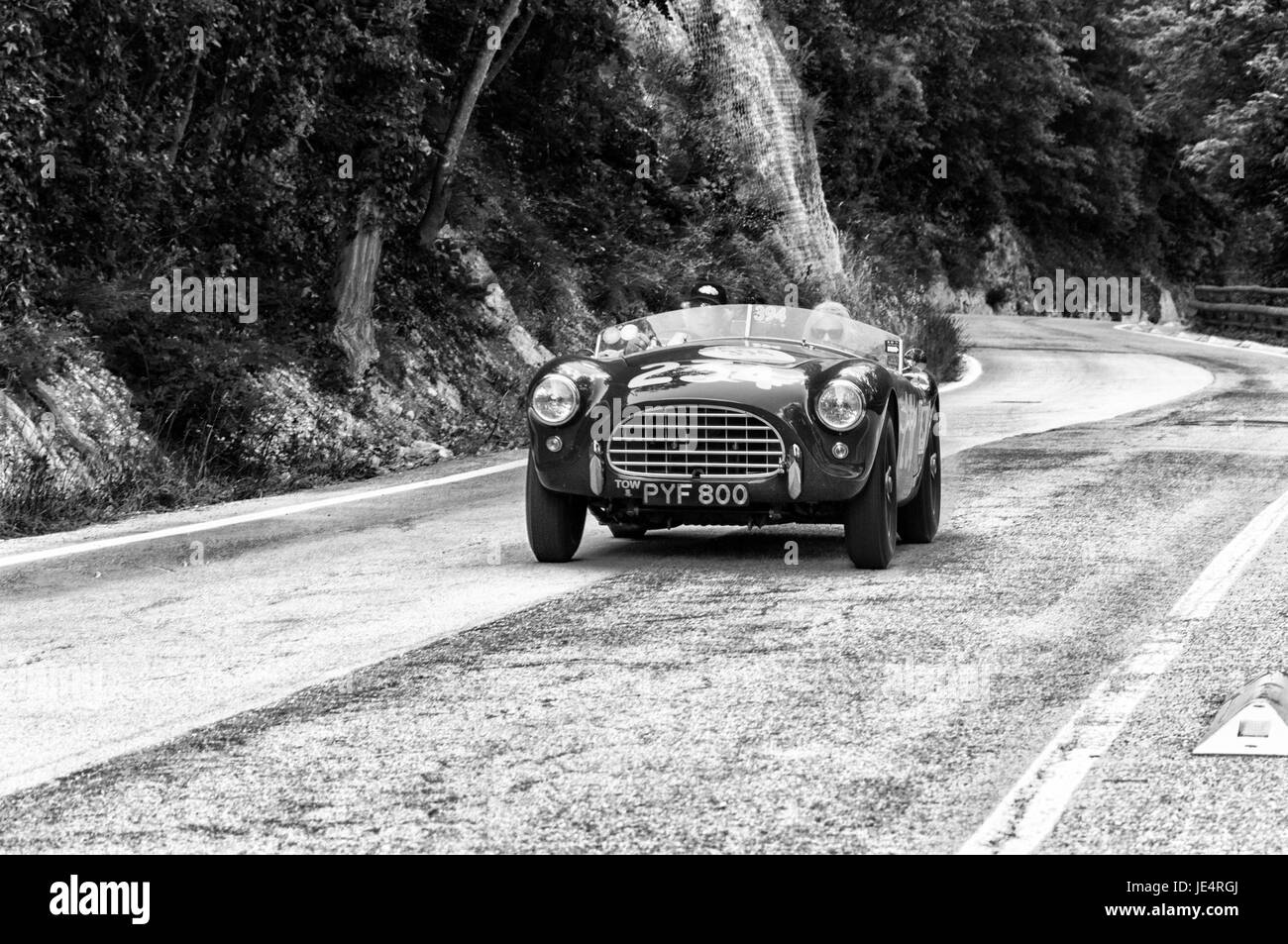 GOLA DEL FURLO, ITALY - MAY 19: A.C. ACE 1955 on an old racing car in rally Mille Miglia 2017 the famous italian - Stock Image