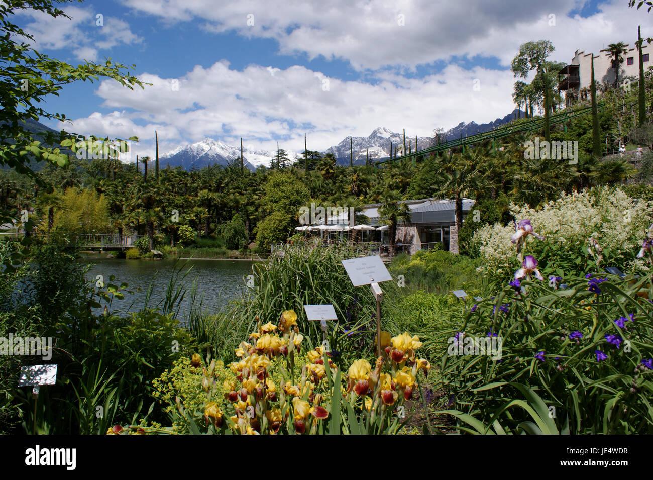 Blick auf die Botanischen Gärten von Meran und im Hintergrund die schneebedeckten Berge der Texelgruppe; im - Stock Image