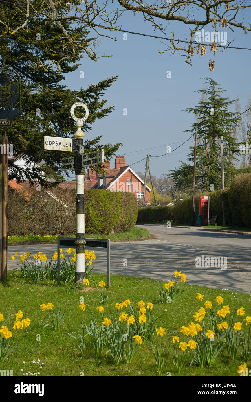 Sussex village in springtime. Daffodills out at village crossroads. - Stock Image