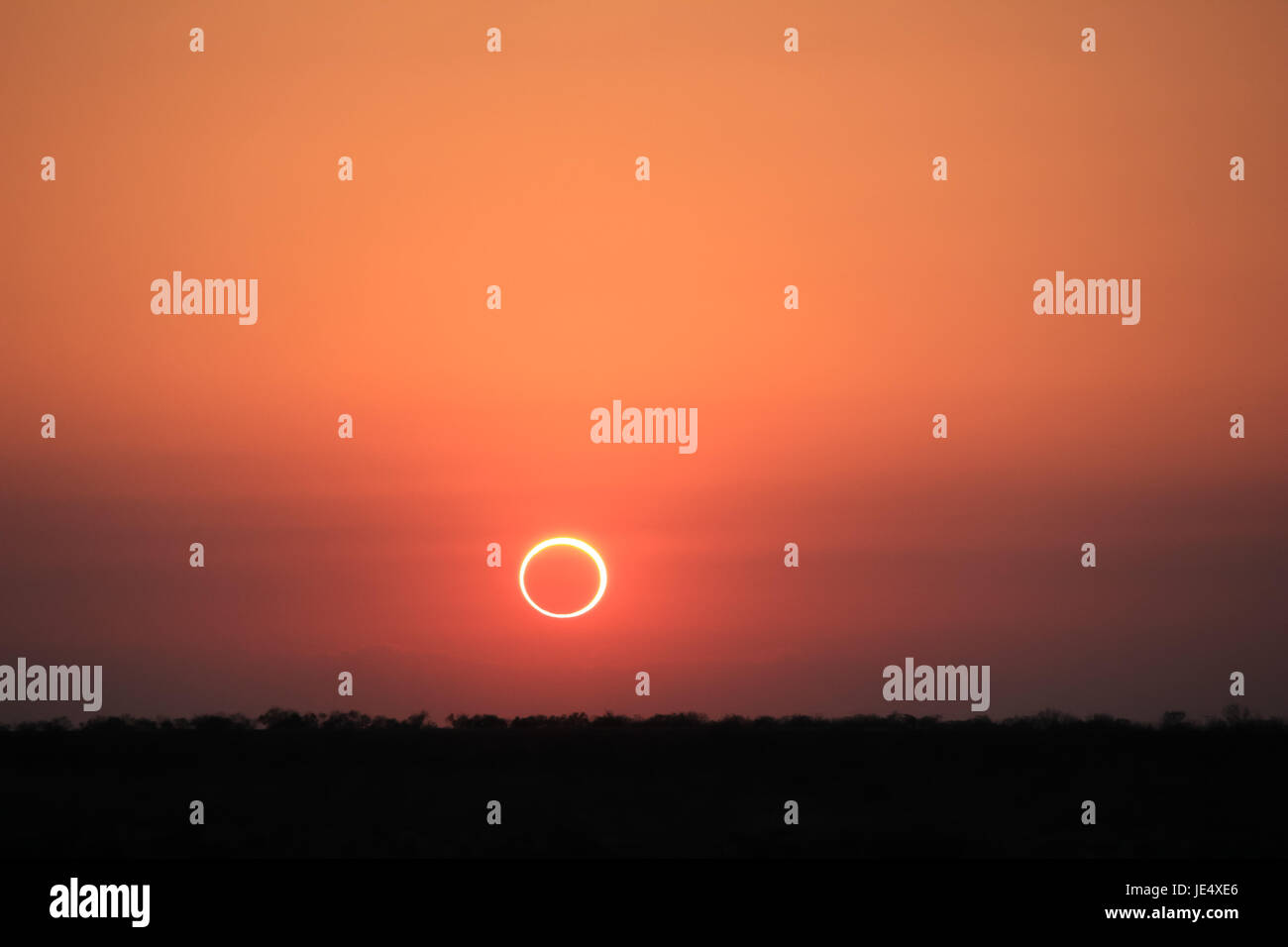 Ring of Fire Solar Eclipse #14 - Stock Image