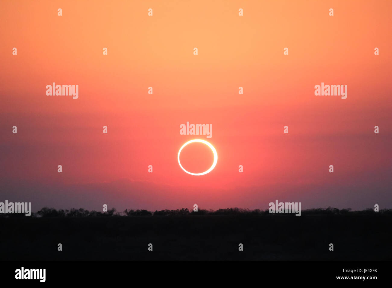 Ring of Fire Solar Eclipse #11 - Stock Image