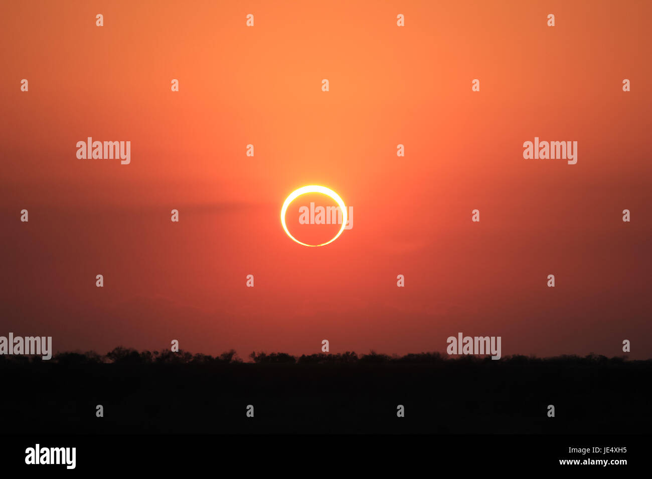 Ring of Fire Solar Eclipse #5 - Stock Image