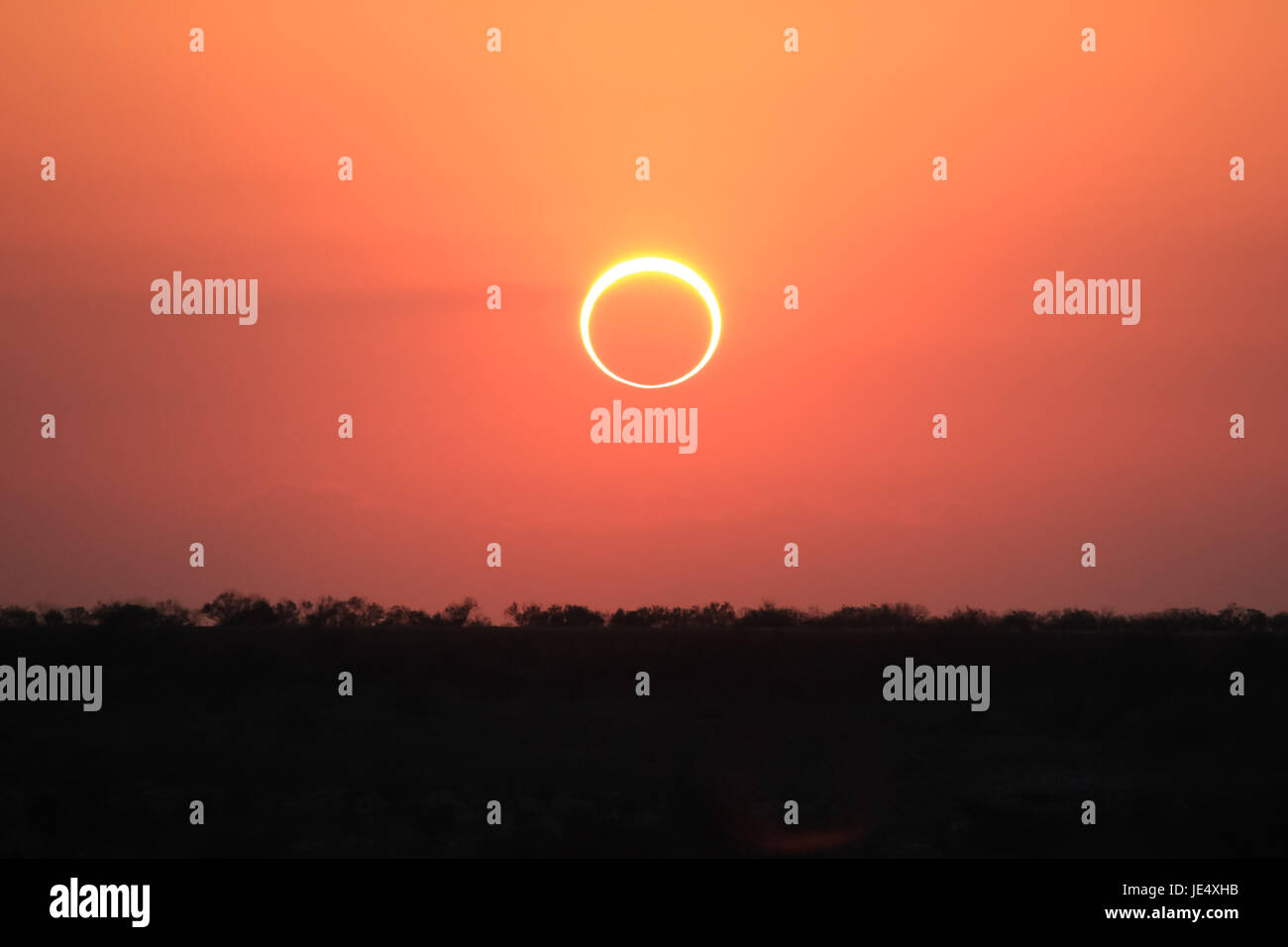 Ring of Fire Solar Eclipse #4 - Stock Image