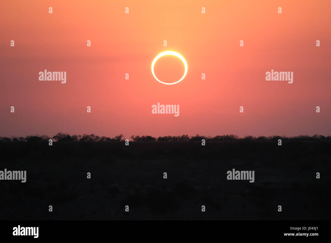 Ring of Fire Solar Eclipse #2 - Stock Image