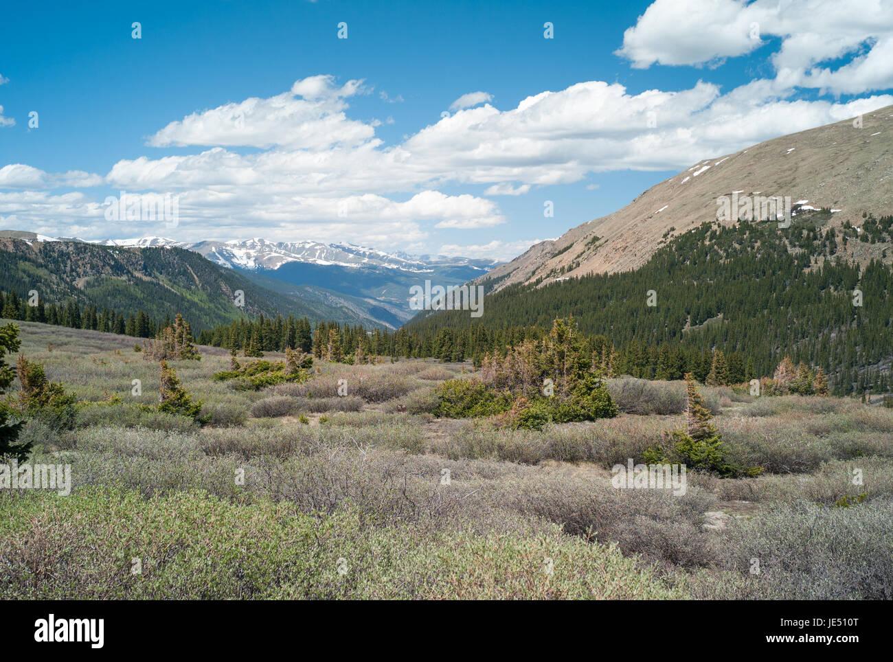 Guanella Pass Colorado - Stock Image