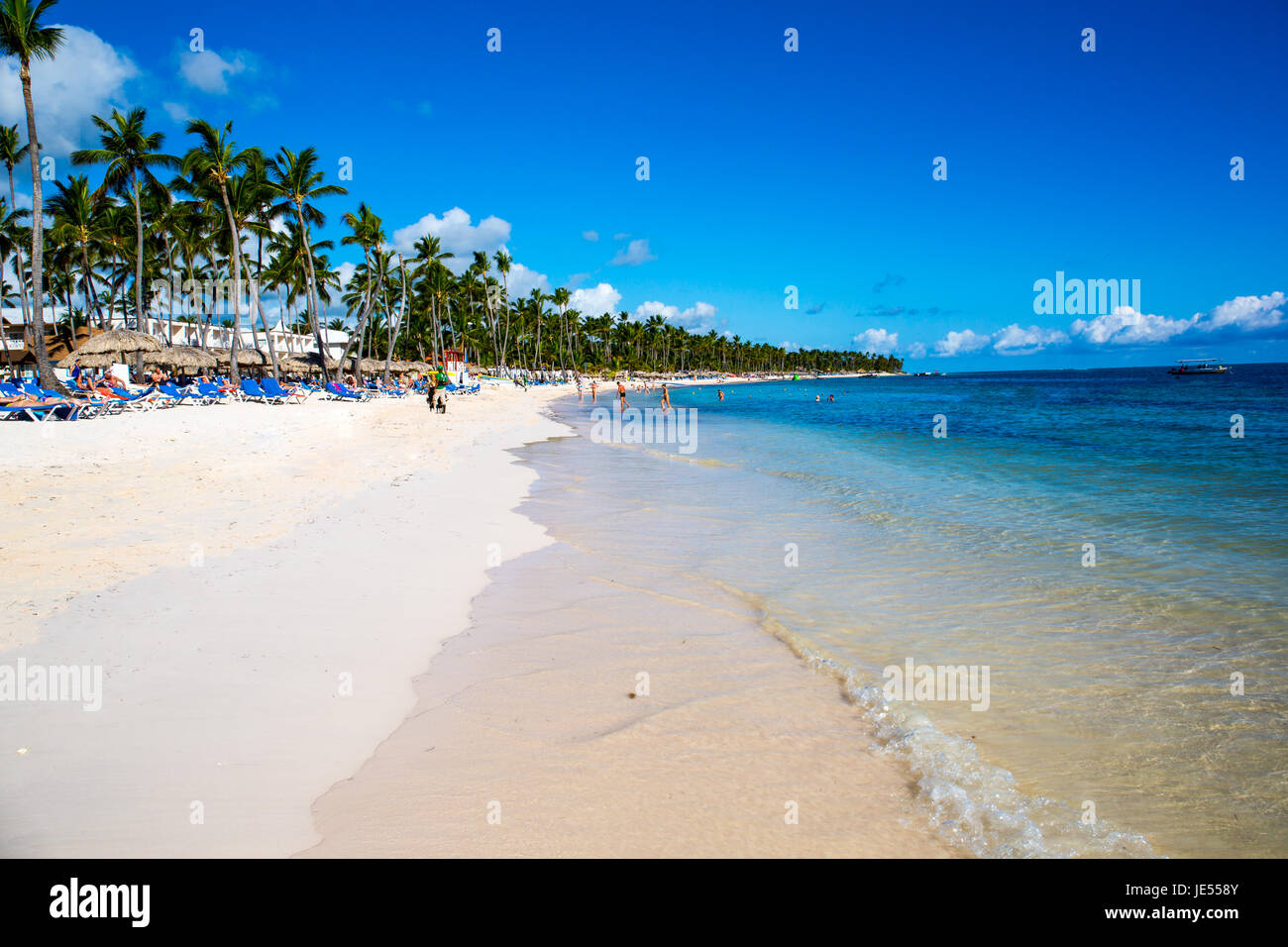 beautiful landscape with big green palm trees in the foreground to the background of tourist umbrellas and sunbeds - Stock Image