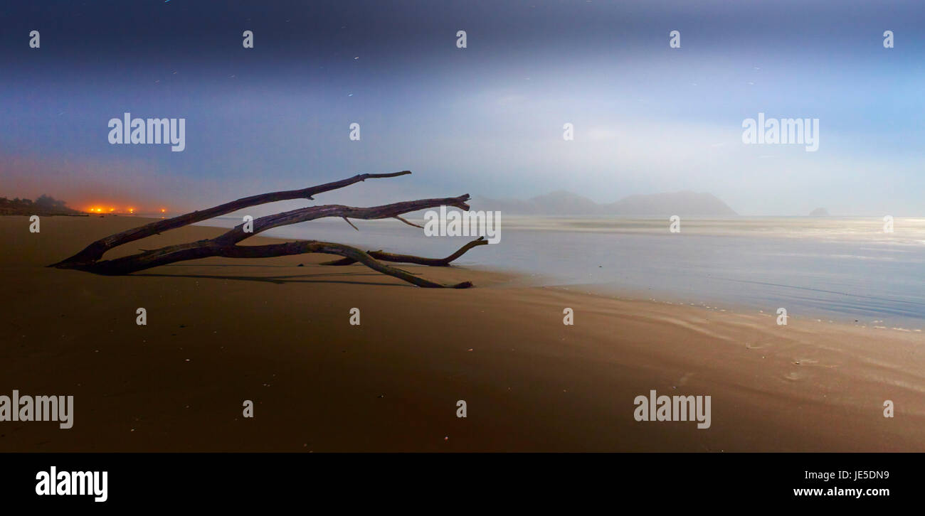 Tolaga bay beach night time , East coast - Stock Image