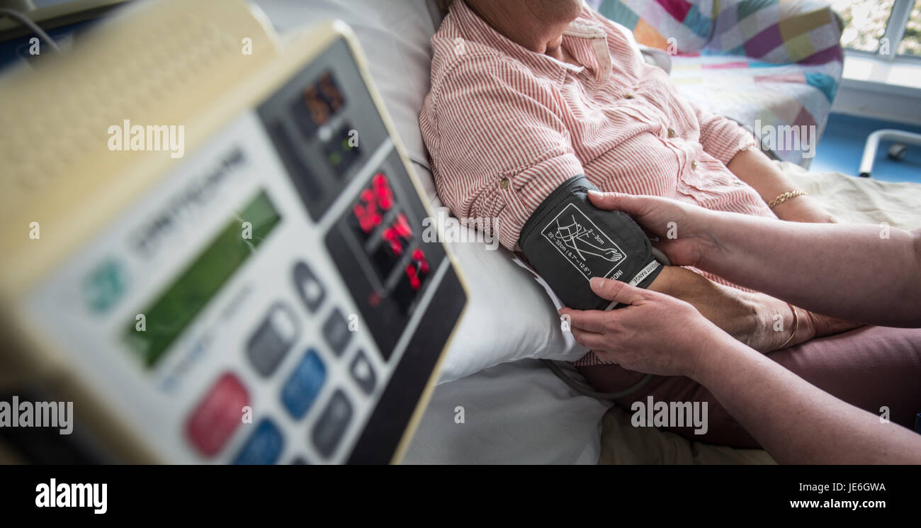 Copyrighted Image by Paul Slater/PSI - A generic blood pressure check on a patient by a nurse.. - Stock Image