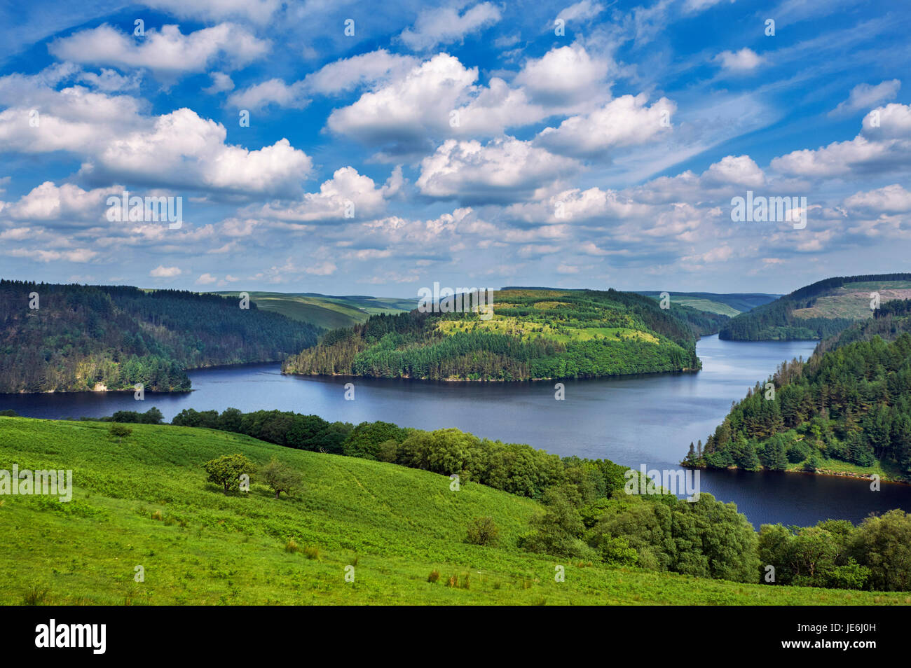 Llyn Brianne reservoir in the Towy Forest, completed in 1972. Powys, Wales. - Stock Image