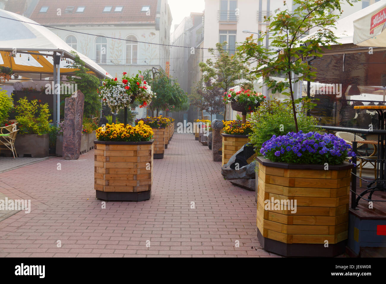 Foggy morning at historic city centre of Riga. One of the central squares with summer cafes and flowers. Latvia, Stock Photo
