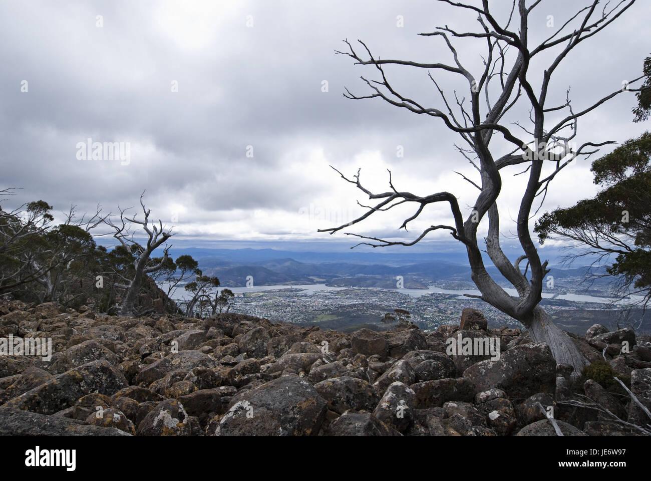 Australia, Tasmania, Hobart, Mt. Wellington, - Stock Image