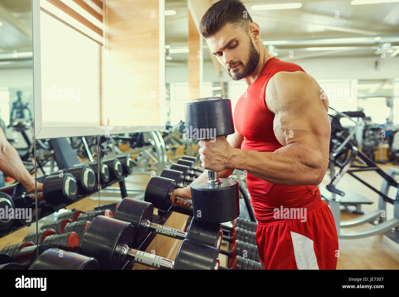 Bodybuilder athlete with dumbbells in the gym - Stock Image