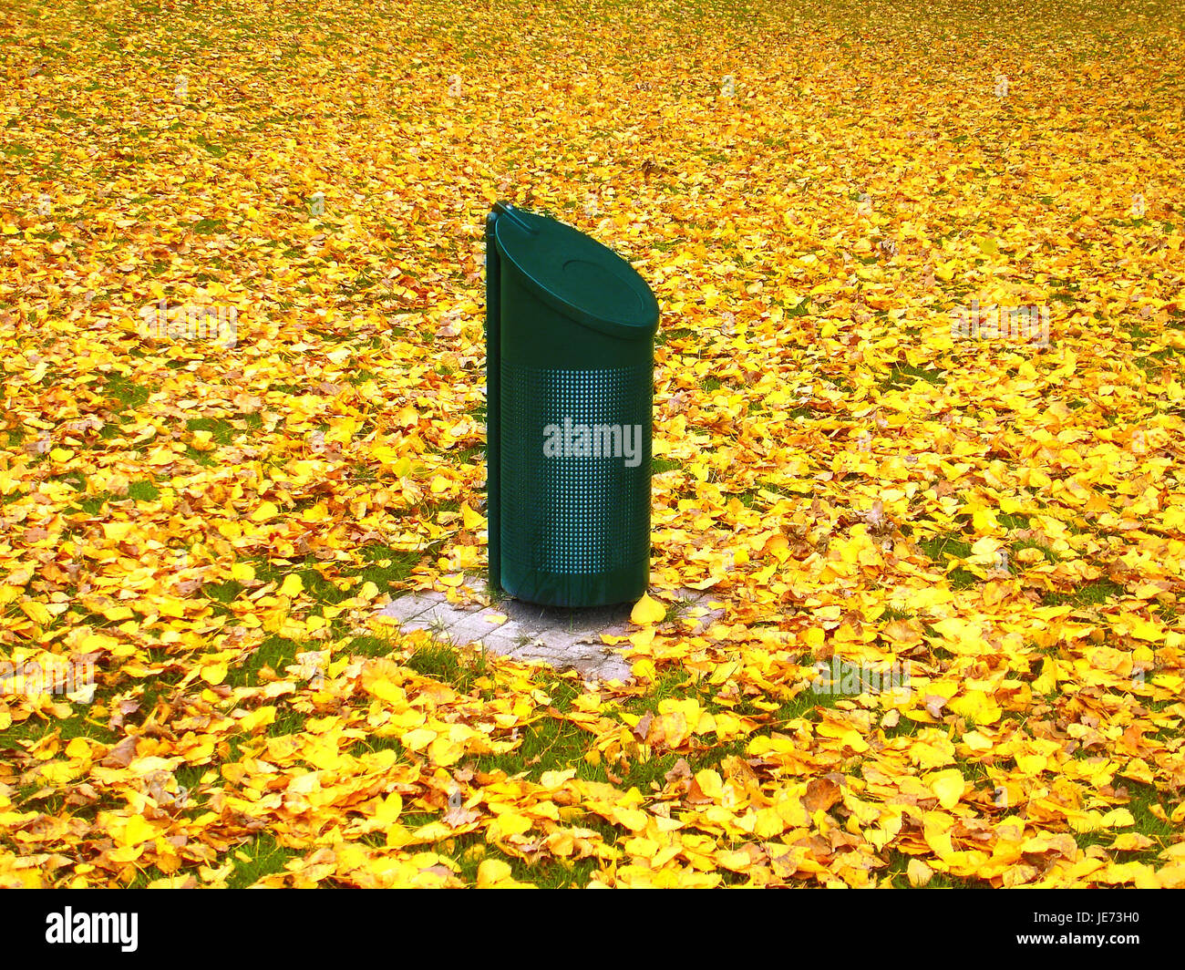 Garbage can on meadow with autumn foliage, - Stock Image
