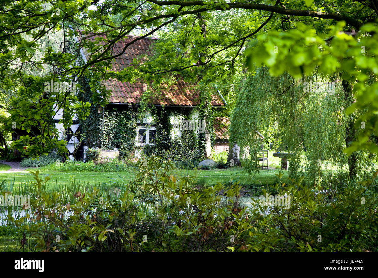 Germany, North Rhine-Westphalia, circle of Minden-Lübbecke, residential house, become overgrown, village, Todtenhausen, - Stock Image