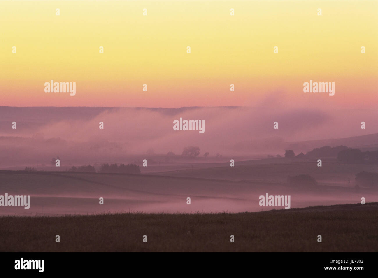 Great Britain, England, Northumbria, scenery, fog, red sky, Europe, Northumberland, width, distance, view, meadows, - Stock Image