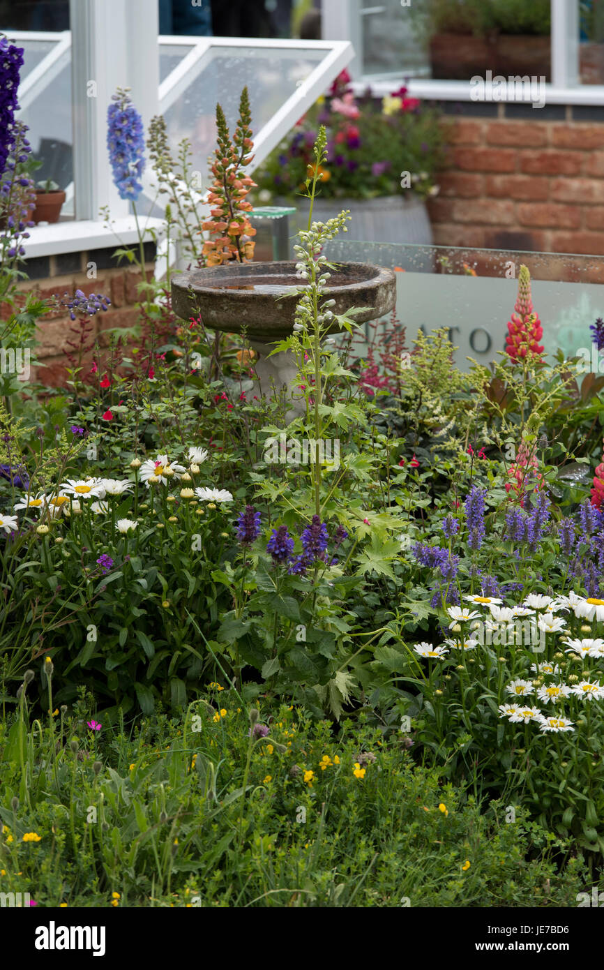 Hartley Botanic trade stand with greenhouses & flowering plants on display - RHS Chatsworth Flower Show, Chatsworth - Stock Image