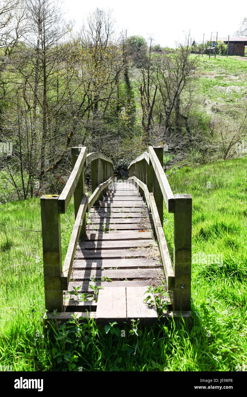 Bridge or boardwalk at Swettenham Meadows nature reserve run by Cheshire Wildlife Trust, Swettenham Cheshire England - Stock Image