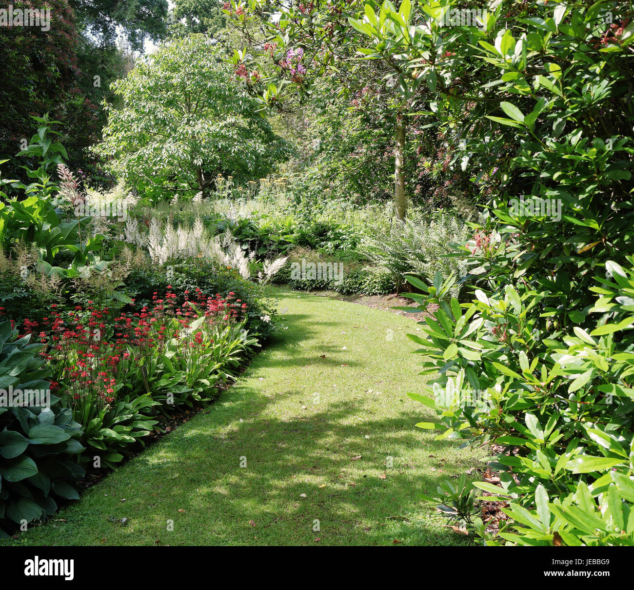 Grassy path between flowerbeds in an English garden - Stock Image