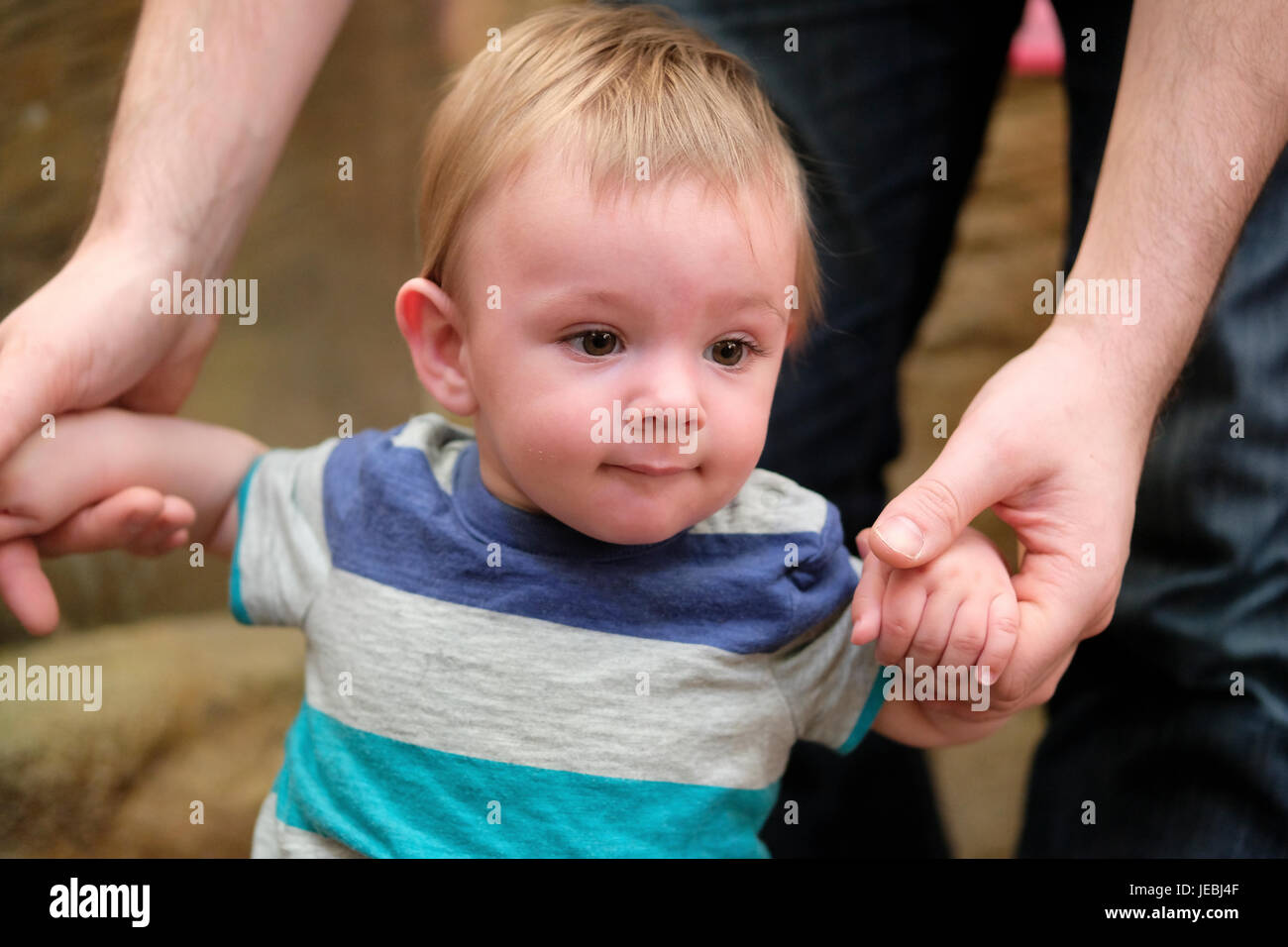 baby boy learning to walk - Stock Image