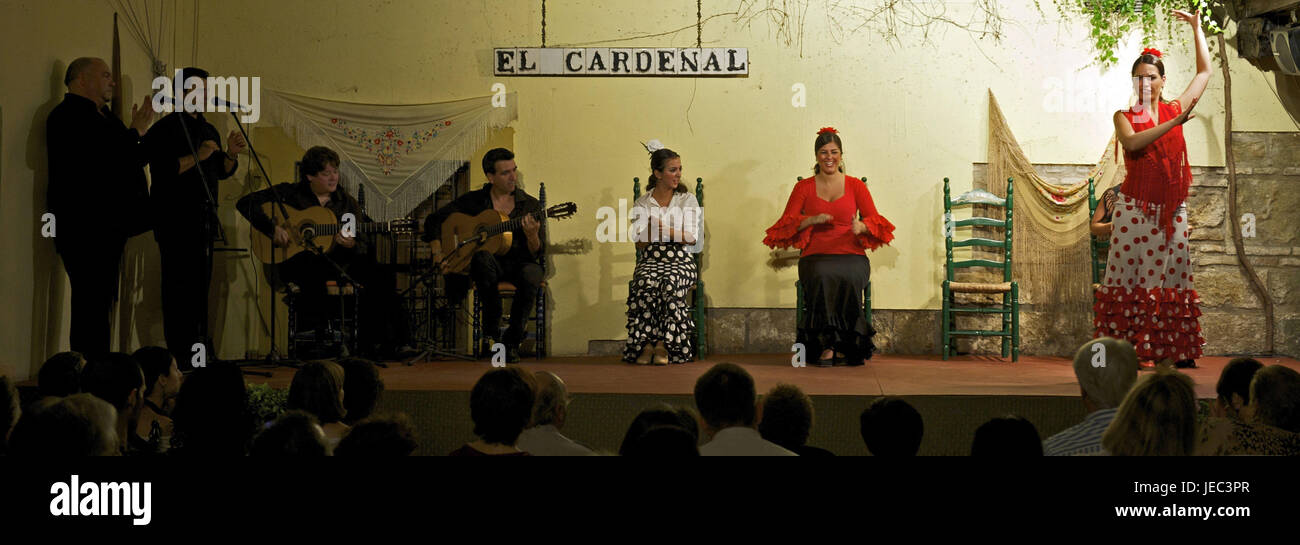 Spain, Andalusia, flamenco in the Tablao Cardenal, - Stock Image