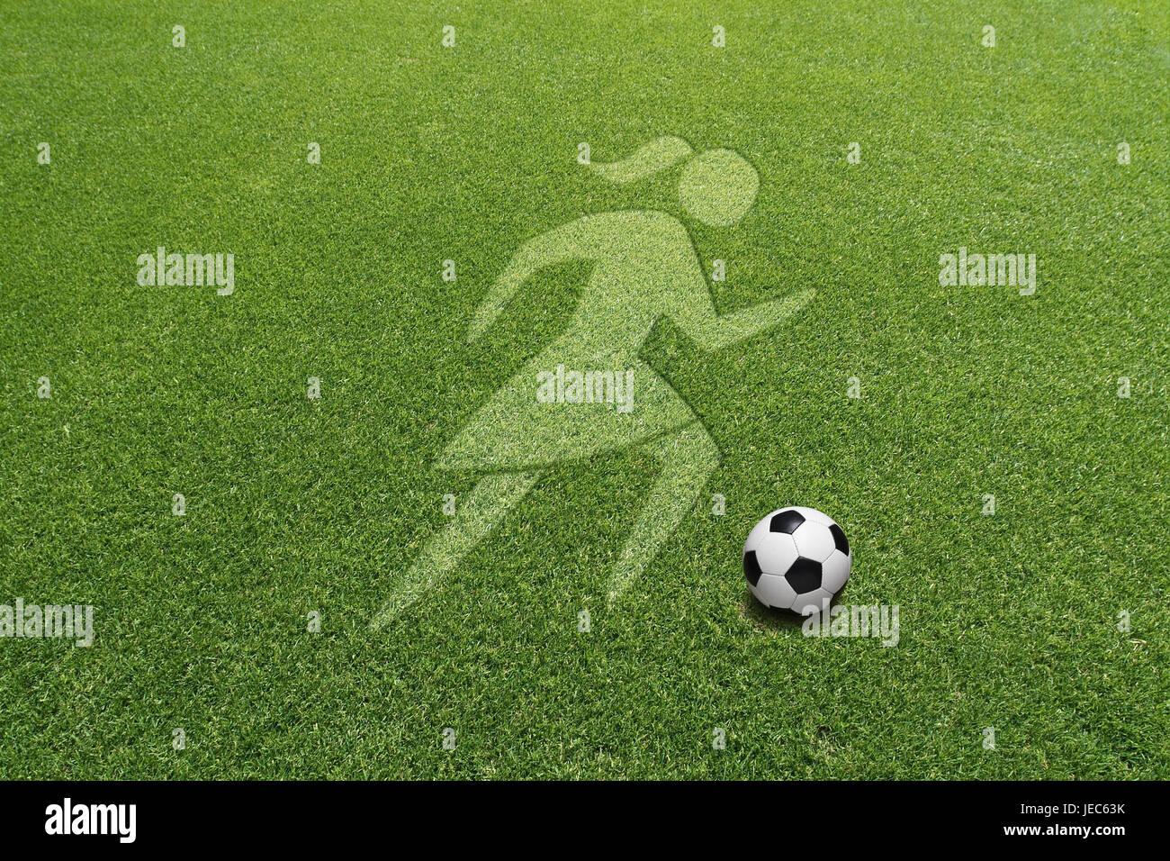 Turfs, icon, icon, women's football, - Stock Image