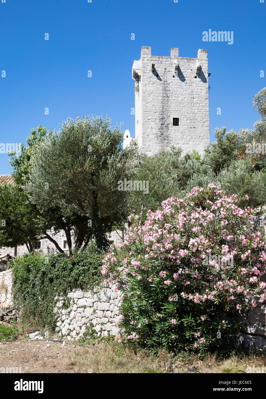 Benedictine monastery of St Mary on St Mary's island in Jezero sea lake on the island of Mljet in Croatia's - Stock Image