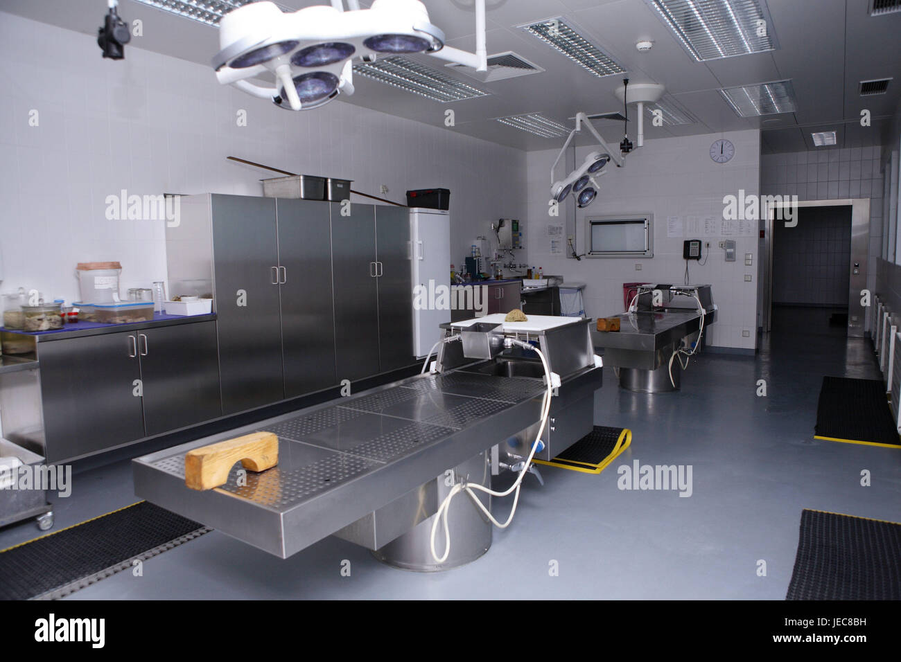 Hospital, pathological-anatomical department, Prosektur, dissected broad, medicine, hospital department, morgue, Stock Photo
