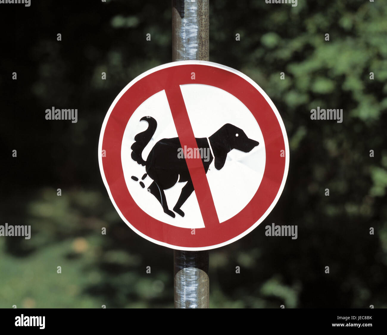 No parking sign, 'dog excrement', sign, sign, ban, icon, dog, excrement stop, dog small heap, not equipped, - Stock Image