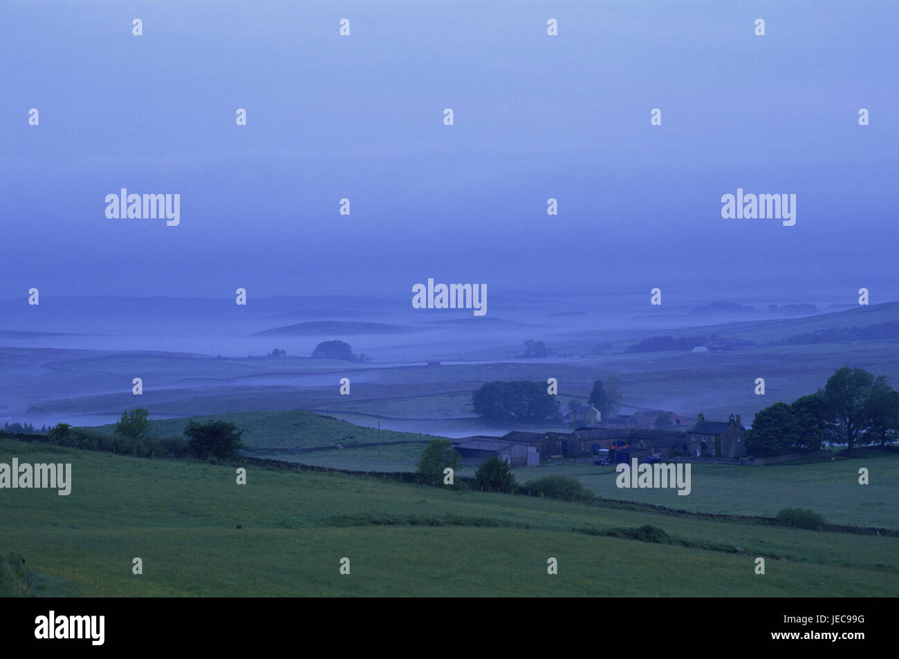 Great Britain, England, Northumbria, scenery, fog, farmhouse, Europe, Northumberland, width, distance, view, meadows, - Stock Image