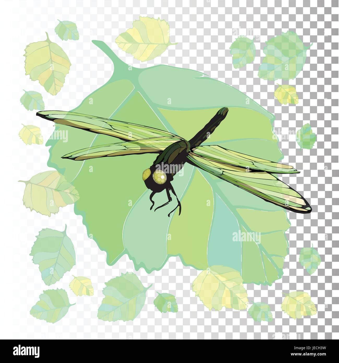 Dragonfly Symbol Of Summer Illustration On Isolated Background