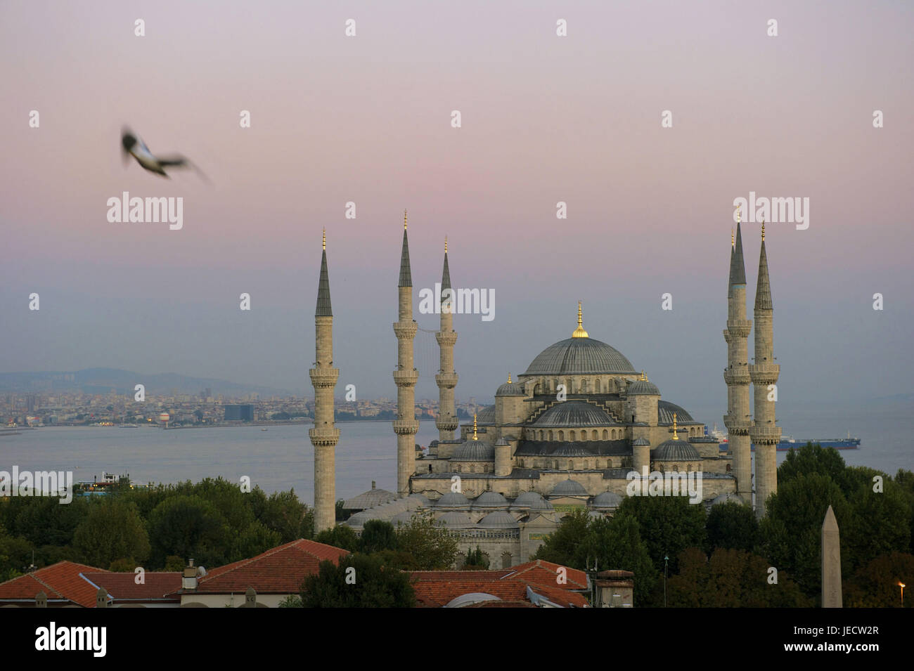 Turkey, Istanbul, sultan's Ahmed's mosque, blue mosque in the daybreak, - Stock Image