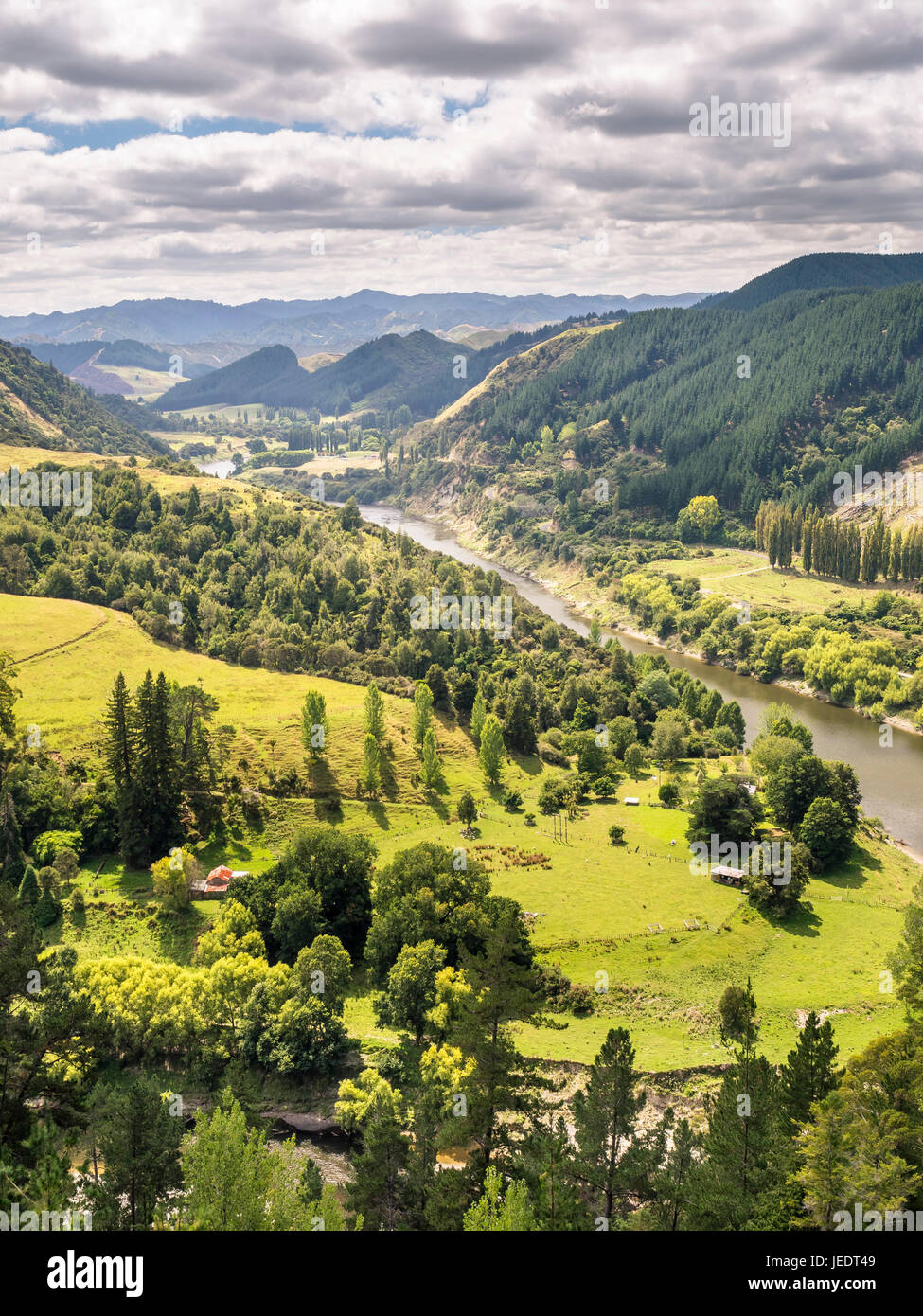 New Zealand, Northern Island, Whanganui River - Stock Image