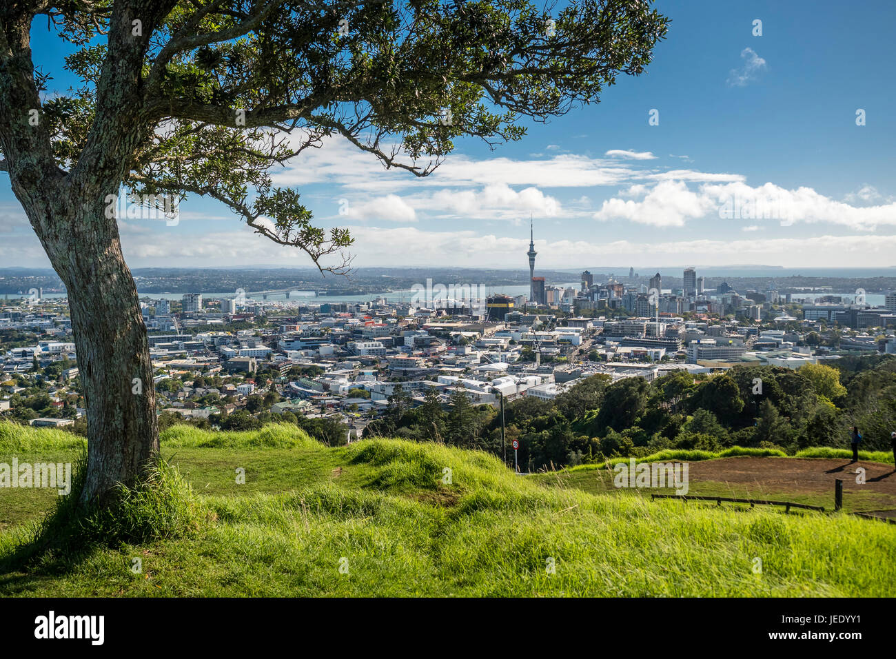 New Zealand, North Island, Mount Eden, Auckland, cityscape - Stock Image