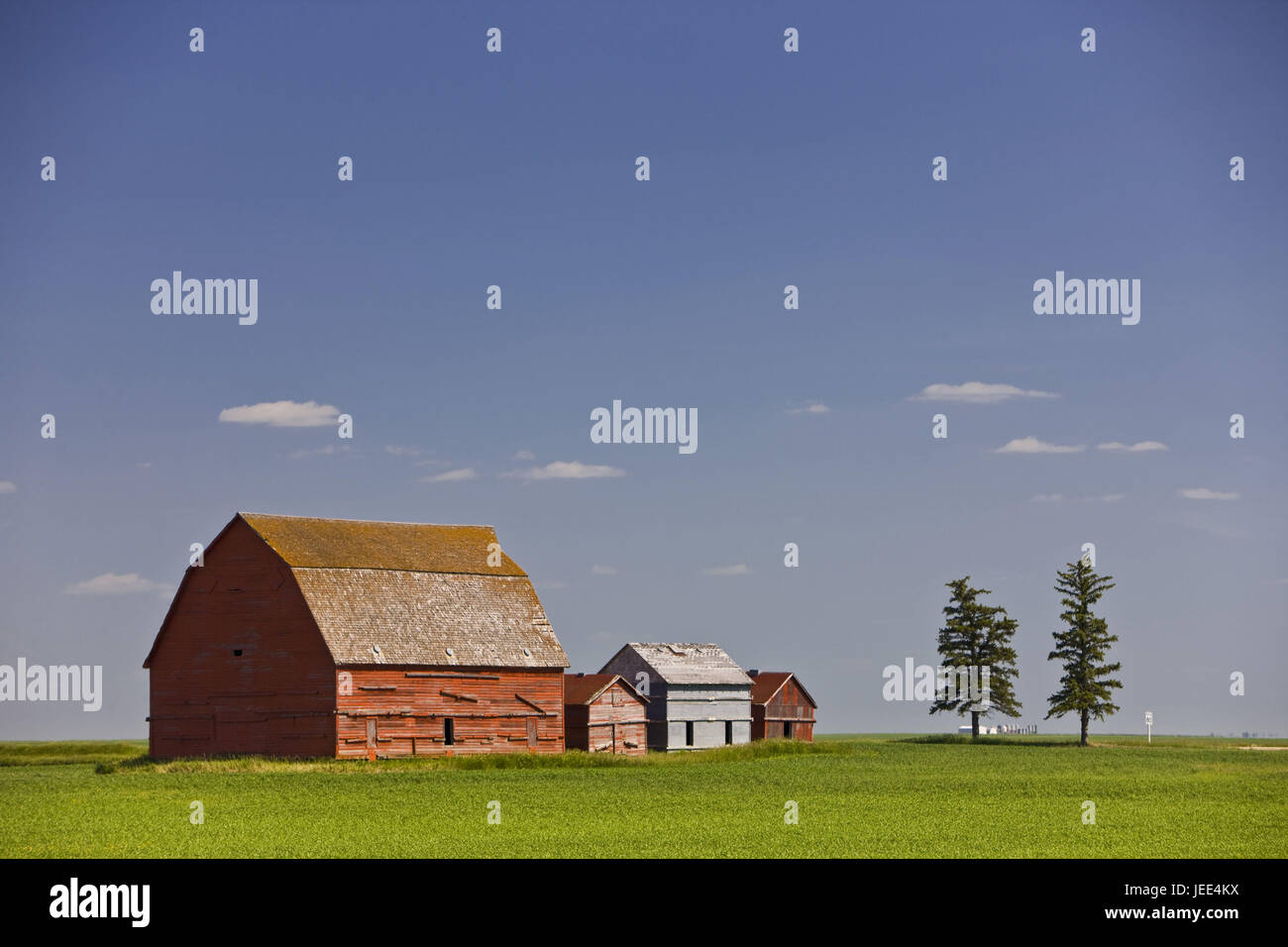 Canada, Saskatchewan, Prärie, meadow, barns, Stock Photo
