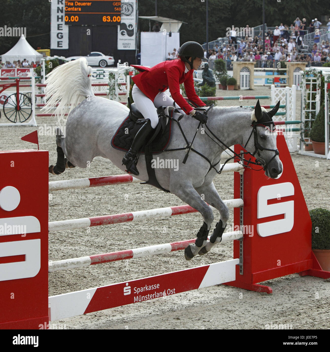 Horse-racing, German championships jumping and training in 2010 in Münster, Springreiterinnen, Tina Deuerer - Stock Image