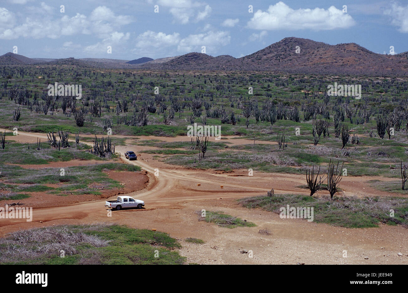 Wild scenery, the Caribbean, voucher airs, 'Washington Slagbaai national park', street, vehicle, - Stock Image