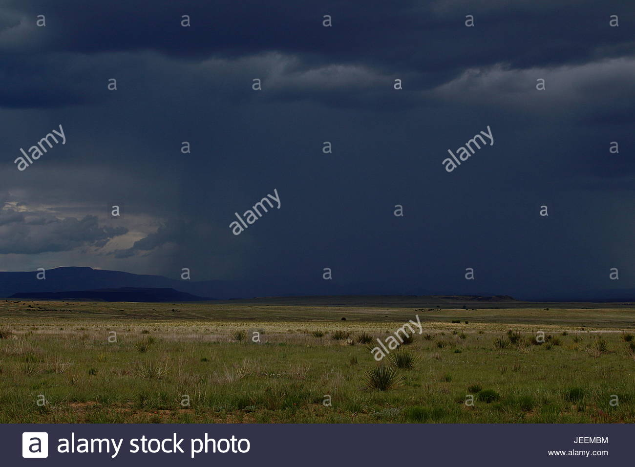 Downburst in a New Mexico desert - Stock Image