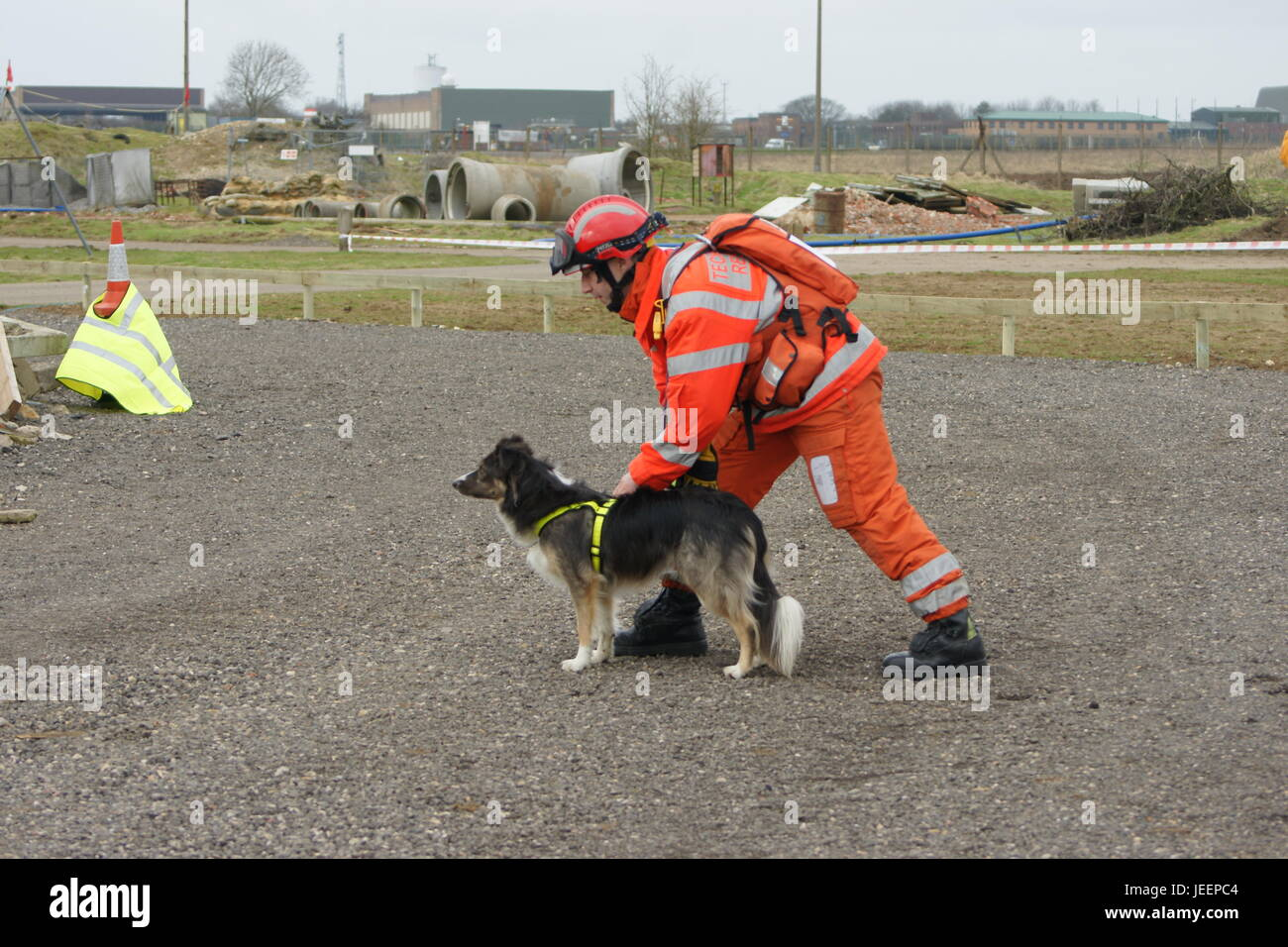 fire service Search and rescue dog, USAR team - Stock Image