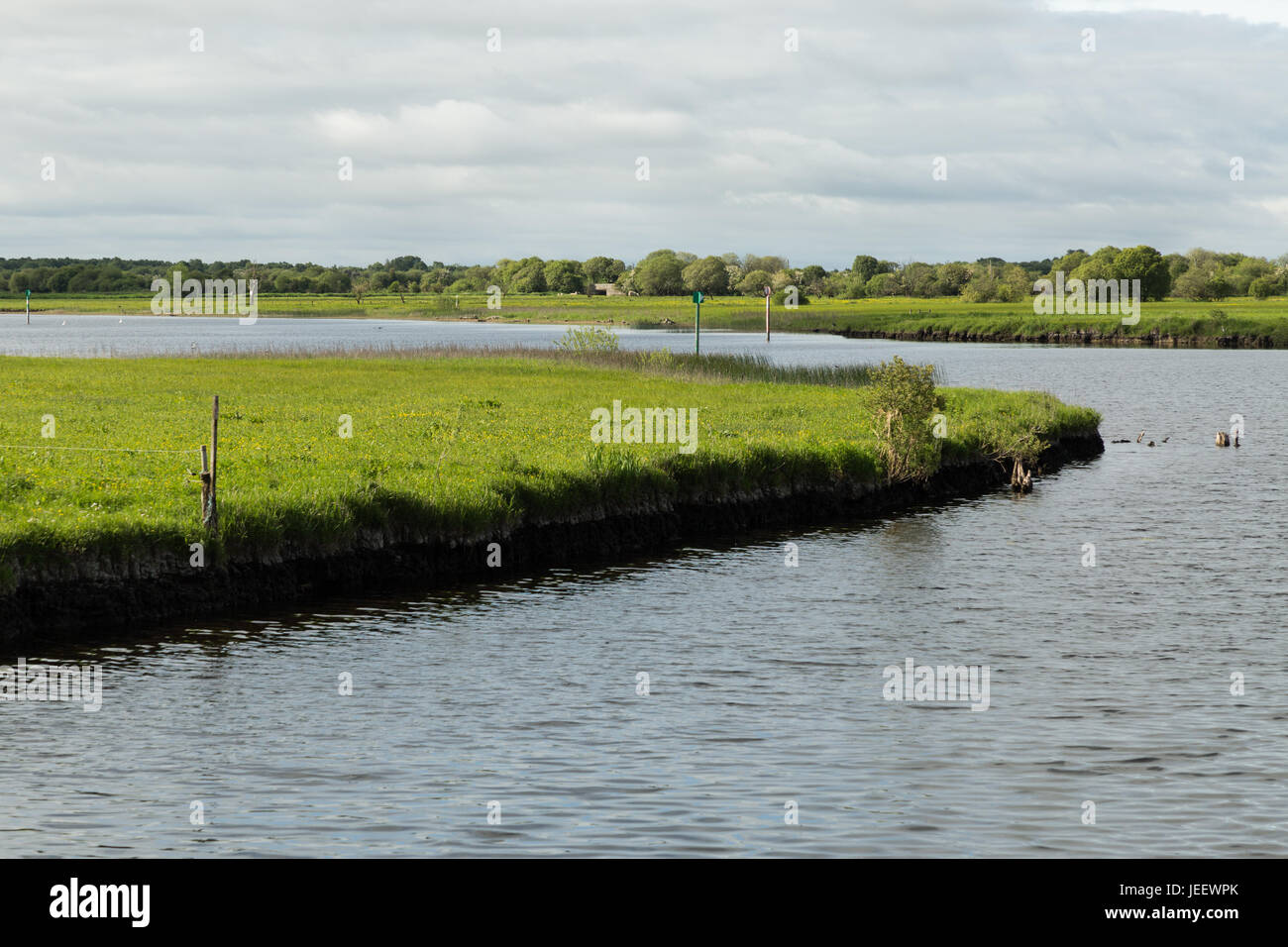 cruising on the River Shannon - Stock Image