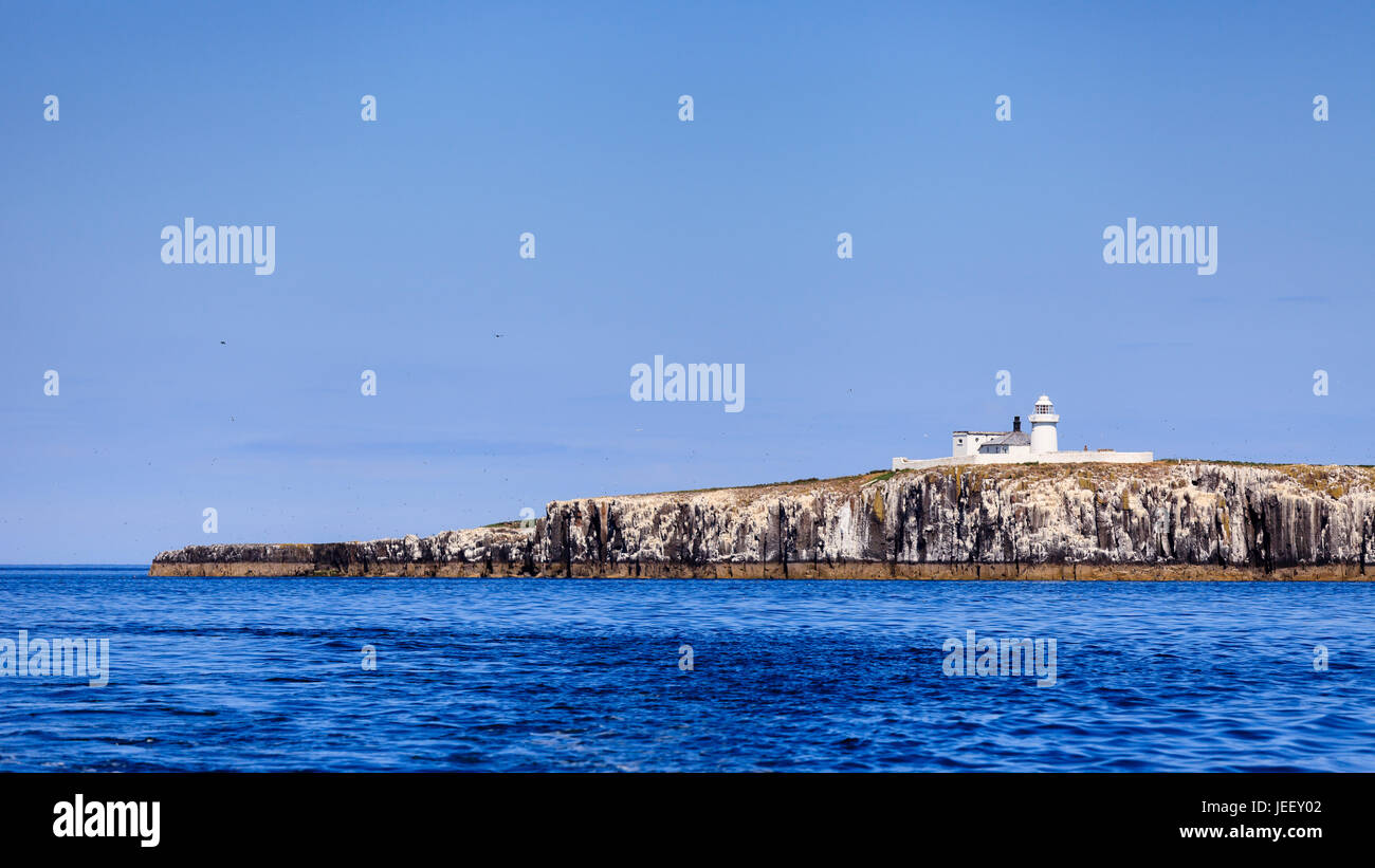 Farne Islands Lighthouse.  This lighthouse is situated on the Inner Farne Islands on the Northumberland Coast in Stock Photo
