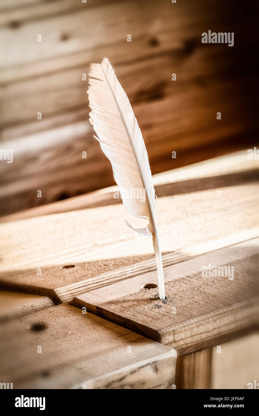 Feather pen for writing and a wooden table close-up. - Stock Image
