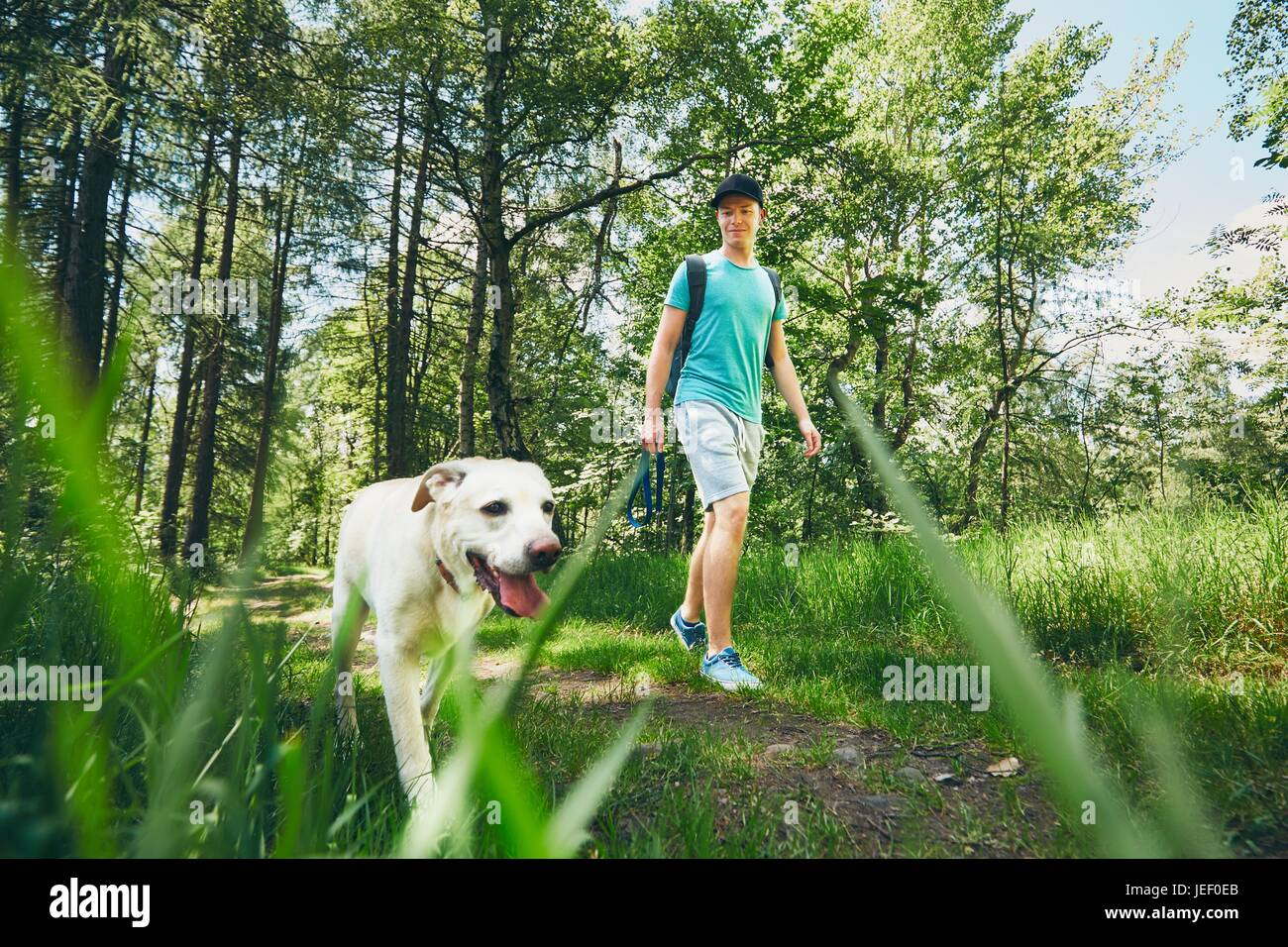 Young man walking with his dog (labrador retriever) in forest. Summer time and vacations theme. - Stock Image